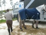 Fontainebleau préparatifs de retour Tangaroa et Soleil du jour 12/05/2013