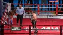 (17-05-2013) Denis Lebedev vs Guillermo Jones - Pelea Completa