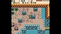 Soluce Zelda Oracle of Seasons : Palmes Zora