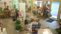 Camors Locaux commerciaux Sous sol avec chambre froide Parki