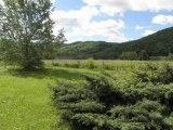 MR 2402 Bis Immobilier Tarn et Garonne. Secteur Saint Antonin, Villa  de Plain Pied 1998, de 138m² de SH, 3 chambres, terrain 3515m² .