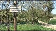 Sentiers pédestres Canton de Montluel