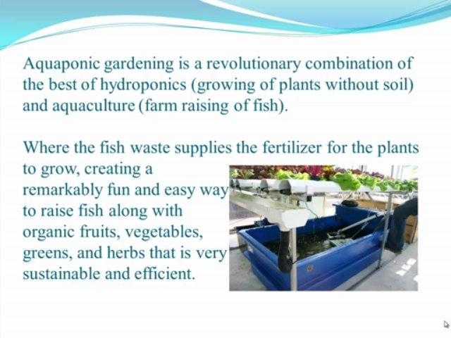 Aquaponic Gardening Guide Releases Brand New Aquaponic Systems Site