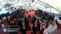 Cannes 2013 : la montée des marches vue du tapis rouge