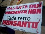 Dangelo94 contre Monsanto, Manif du 25.05 Paris