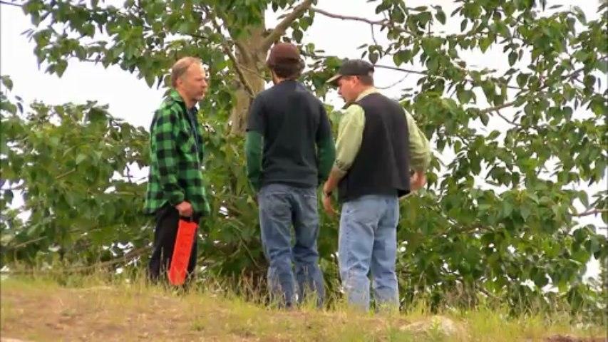 R5 Sons : Season 01 Episode 03 - Cabin Building Part 1