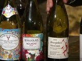 Beaujolais nouveau 2009 : les meilleurs vins en vidéo