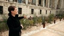 Un jardin pour le Palais de la Porte Dorée. Rencontre avec Liliana Motta.