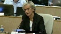 AP 31 mai 2013 - Intervention de Sylvie COCHET sur le débat sur la transition énergétique (comment aller vers l'efficacité énergétique et la sobriété ?)