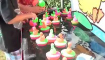 Duck Pond Sales from Twister Display - Duck Pond VO