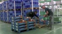 Conditions de travail et performance : les salariés au coeur de l'entreprise - ARACT Pays de la Loire