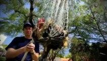 Dirty Jobs - Spit Take - Sea Lamprey Exterminator