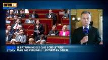 BFM STORY: Le patrimoine des élus consultable mais pas publiable, les verts en colère - 04/06