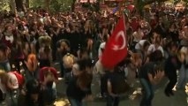 Turkish opera, dance artists join park protests