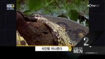 [mix][XTM] 남자공감랭크쇼 M16.130510.사나이 목숨 줄을 위협하는 위험한 동물.HDTV.H264.720p-HEAD