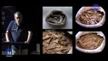 ADS: Henri Duday  L'usage de l'anthropologie biologique dans la connaissance des pratiques funéraires