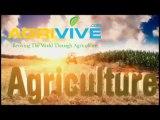 Buy Bulk Corn, Sweet Corn Harvest Time, Harvesting Corn Silage, Sweet Corn Harvesting Equipment