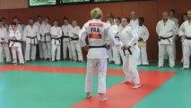 Judo : Automne Pavia de retour à Saint-Just