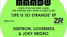 Joey Negro - Life is so strange (Joey Negro Medusa Club)
