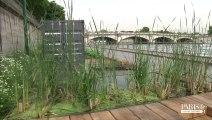 Balade sur les nouvelles berges de Seine