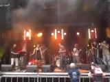 Green Valley Vibes - Au Secours - Fête de la musique - Swiss 2013