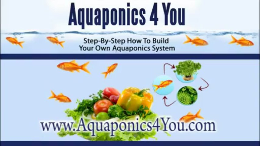 Aquaponics. Step-By-Step How To Build Your Own Aquaponics S