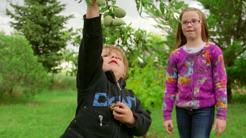 La biodiversité ordinaire: Puimisson, une commune rurale engagée !