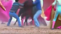 Peruvian bullfighter seriously injured in gruesome goring