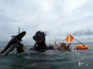 Chasse Sous-Marine QUIBERON