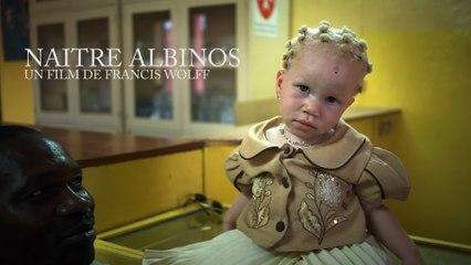 NAITRE ALBINOS