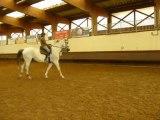 à dada sur mon cheval