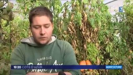 2012-11-15 - FR3 Cote d'Azur - Jeunes Agriculteurs dans le 06