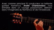 OLE !  ANDRE CHARBONNEAU Spectacle Flamenco Andalousie interactif