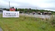 Vidéo-Arlette GRUSS éléphant avec l'association NON A LA CAR