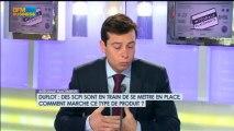 SCPI Duflot : quel intérêt ? Philippe Vergine dans Intégrale Placements - 4 juillet