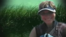 Kvinna i kajak attackeras av alligator