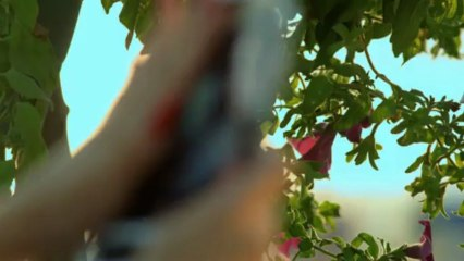Gold AG ft. Beatrix Ramosaj - Sa Vite (Official Video HD)