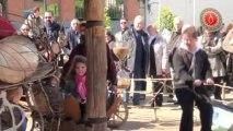 Douai - Dimanche 22 avril 2012 - Journee Verte