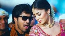 Nuvva Nena Songs - Oy Pilla - Shriya Saran, Allari Naresh, Sharvanand