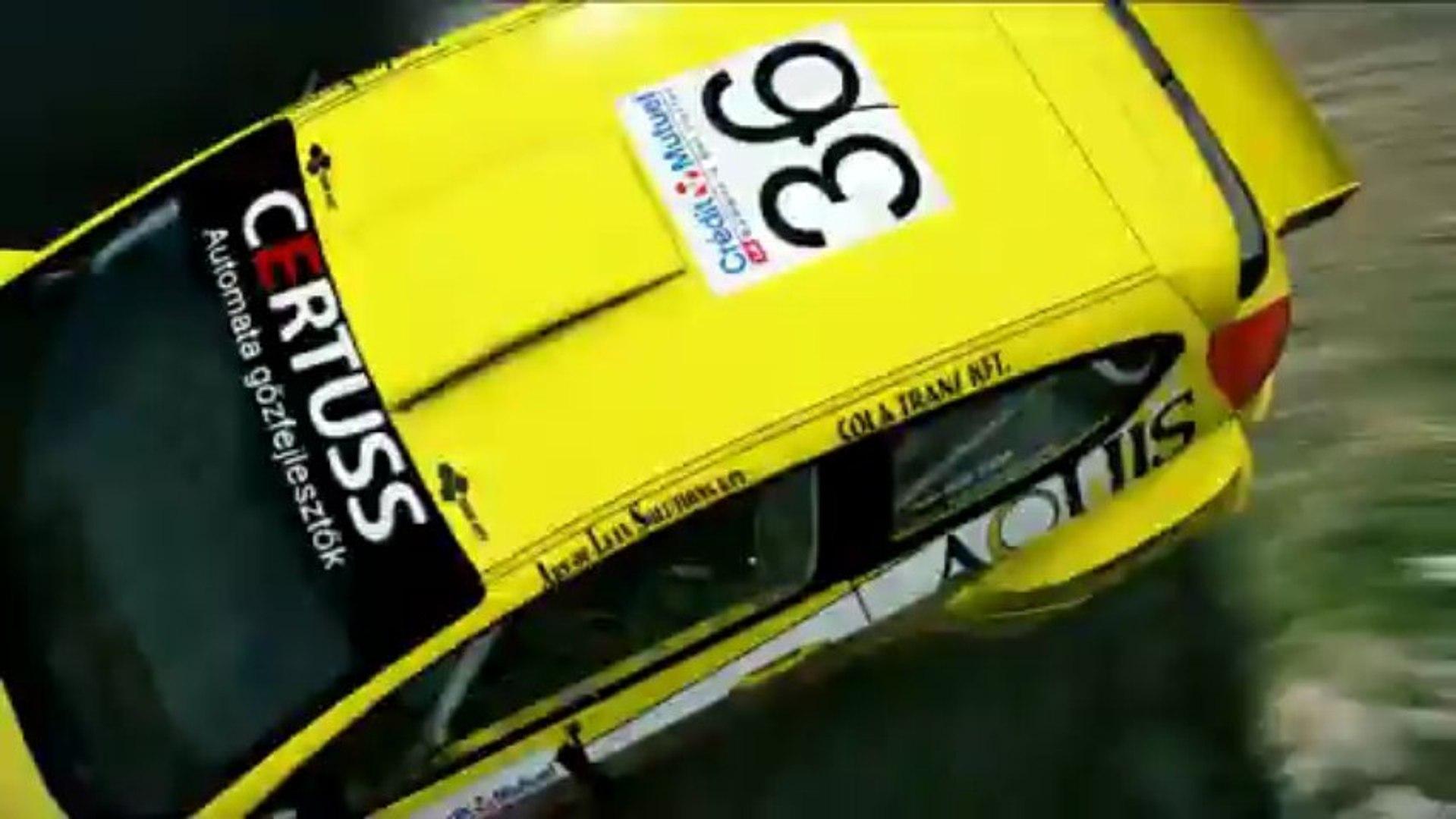 WRC 3 Ollé Sasa Ford Fiesta Custom livery