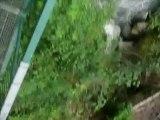 Vivez un saut à l'élastique du pont de Saint-Gervais