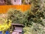 Highscreen Spark - тест камеры