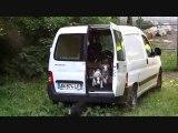 Chiots cherchent famille d'accueil Amis des Bêtes Aix les Bains