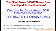 Sales Press Pro - WordPress Theme For Marketers Review   premium wordpress blog themes