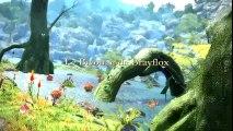 Final Fantasy 14 : A Realm Reborn - Incursion dans les donjons #1 (VF)