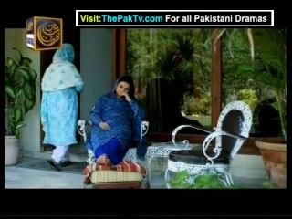 Mere Harjai - Episode 17 - July 26, 2013