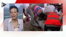 Egypte : heurts violents près du Caire