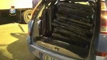 Ancona - Lotta al traffico di stupefacenti - Maxi sequestro di droga (01.08.13)