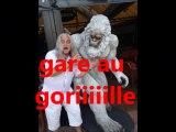 gare au gorille (Georges Brassens par Giorgio)