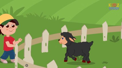 Baa Baa Black Sheep - Nursery Rhyme In English With Full Lyrics